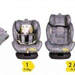 Cosatto tout dans tous les 0+ 123Isofix C/Seat Dawn Chorus de la marque Cosatto image 1 produit
