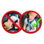 VITAL INNOVATION BeltUpp ceinture de sécurité enfant Noir de la marque Vital Innovation image 3 produit